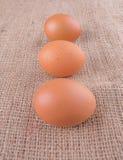 Huevos del pollo en el saco de yute IX Fotos de archivo