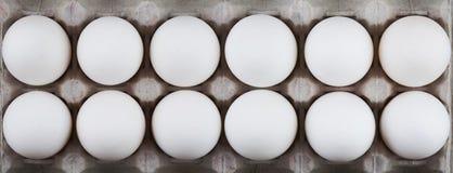Huevos del pollo en la bandeja Fotos de archivo