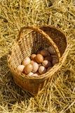 Huevos del pollo en una cesta imagenes de archivo