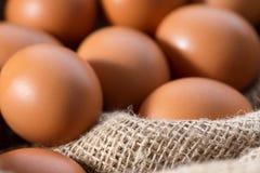 Huevos del pollo que mienten en harpillera Imagen de archivo