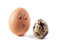 Huevos del pollo y de codornices Imagen de archivo libre de regalías