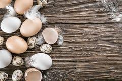 Huevos del pollo y de codornices con las plumas en una tabla de madera Espacio FO Fotografía de archivo