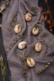 Huevos del pollo y de codornices con los elementos decorativos en fondo negro Imagenes de archivo
