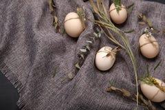 Huevos del pollo y de codornices con los elementos decorativos en fondo negro Foto de archivo libre de regalías