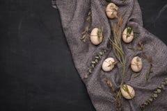 Huevos del pollo y de codornices con los elementos decorativos en fondo negro Imagen de archivo libre de regalías