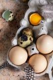 Huevos del pollo y de codornices en el envase con las plumas, visión superior, ver Imagen de archivo