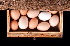 Huevos dentro del cajón Fotografía de archivo