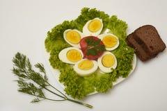 huevos e hierbas hervidos Fotografía de archivo libre de regalías