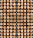 Huevos en bandeja del huevo como fondo Fotografía de archivo