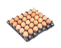 Huevos en bandeja en el fondo blanco Imágenes de archivo libres de regalías