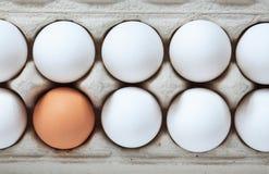Huevos en caja Fotos de archivo