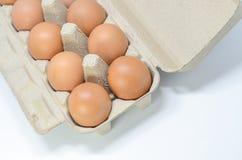 Huevos en caja del cartón Foto de archivo libre de regalías