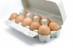 Huevos en caja del cartón Foto de archivo