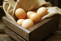 Huevos en cajón de madera Fotos de archivo libres de regalías