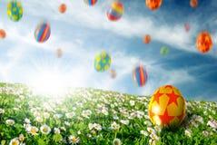 Huevos en campo de flor