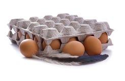 Huevos en cartón Fotos de archivo