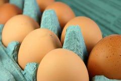 Huevos en cartón Fotos de archivo libres de regalías