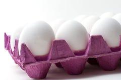 Huevos en cartón Imagenes de archivo