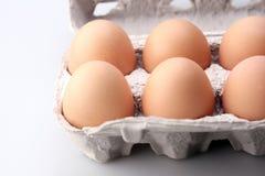 Huevos en caso protector Fotos de archivo