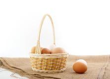Huevos en cesta    Fotos de archivo