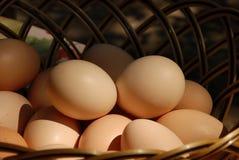 Huevos en cesta Imagen de archivo libre de regalías