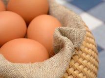 Huevos en cesta con la tela casera Foto de archivo