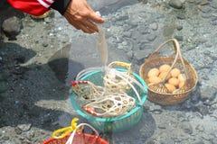 Huevos en cesta Hervido en aguas termales foto de archivo