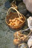 Huevos en cesta Hervido en aguas termales fotografía de archivo