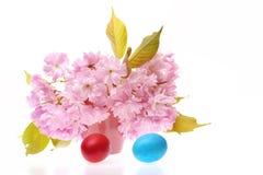 Huevos en colores azules y rojos con Sakura en florero Imagen de archivo libre de regalías