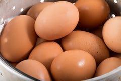 Huevos en cubo Fotografía de archivo libre de regalías