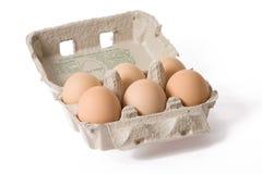 Huevos en el cartón de papel del huevo Imágenes de archivo libres de regalías