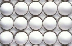 Huevos en el cartón del huevo, cierre para arriba Fotografía de archivo