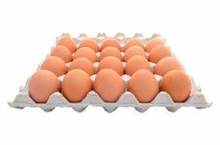 Huevos en el conjunto Fotografía de archivo libre de regalías