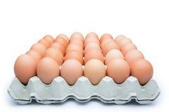 Huevos en el conjunto Imagen de archivo