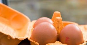 Huevos en el conjunto Foto de archivo