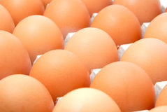 Huevos en el embalaje de la cartulina Fotos de archivo