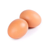 Huevos en el fondo blanco Imagenes de archivo