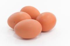 Huevos en el fondo blanco Foto de archivo libre de regalías