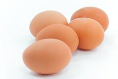 5 huevos en el fondo blanco Foto de archivo libre de regalías