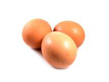 Huevos en el fondo blanco Fotos de archivo