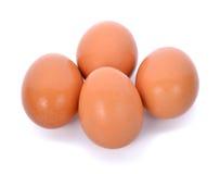 Huevos en el fondo blanco Imágenes de archivo libres de regalías