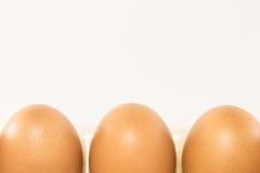 Huevos en el fondo blanco Fotografía de archivo