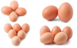 Huevos en el fondo blanco Sistema o colección Imágenes de archivo libres de regalías