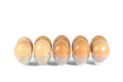 Huevos en el panel plástico Imagen de archivo libre de regalías