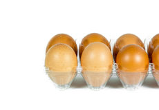 Huevos en el panel plástico Foto de archivo libre de regalías