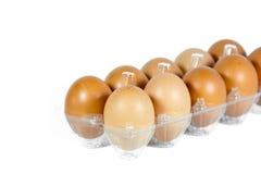 Huevos en el panel plástico Imagen de archivo