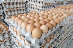 Huevos en el paquete de papel gris Imagen de archivo