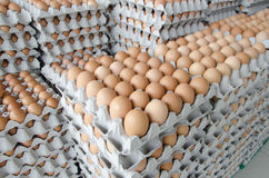 Huevos en el paquete de papel gris Imagenes de archivo