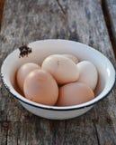 Huevos en el plato Imagen de archivo