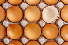 Huevos en el tablero, crudo y fresco Fotos de archivo